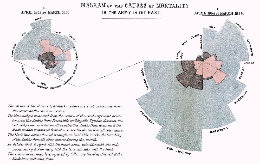 Causes of mortality in the army in the East by Florence Nightingale.