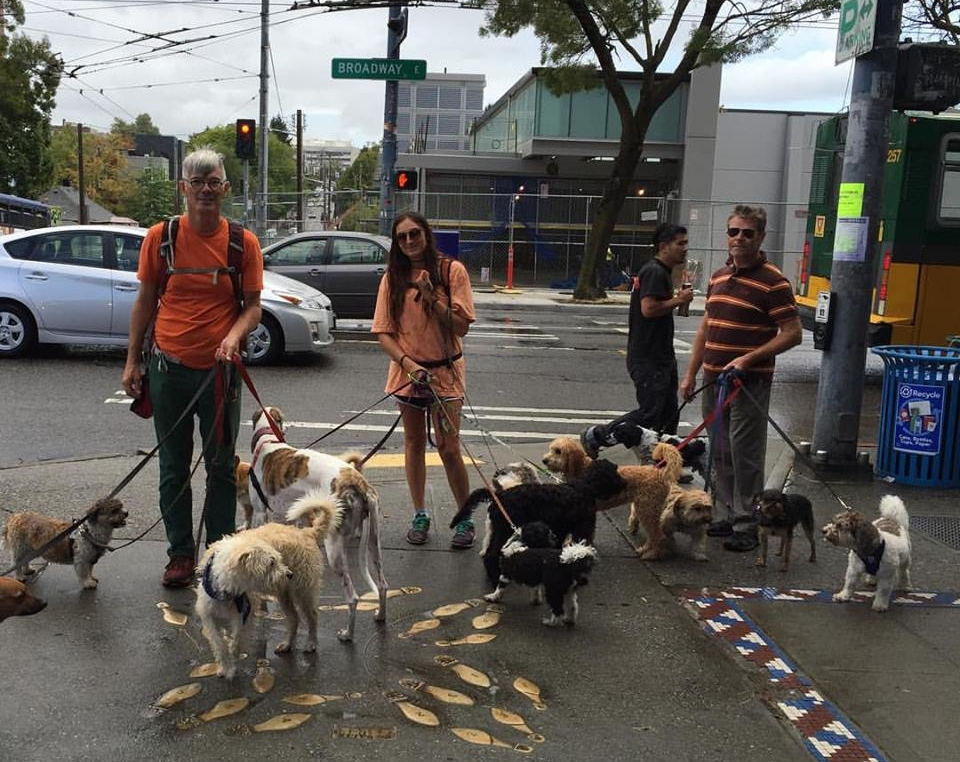Website - Outings - Puppy Parade - Capitol Hill2.jpg