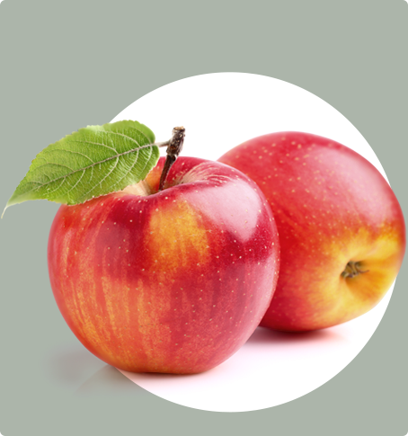 "<a href=""/organics/apples"">Apples</a>"
