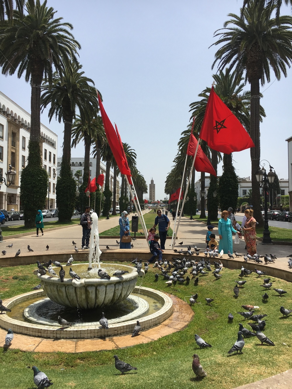 rabat is the capitol of morocco, so it's the center of all things governmental (and pretty!)