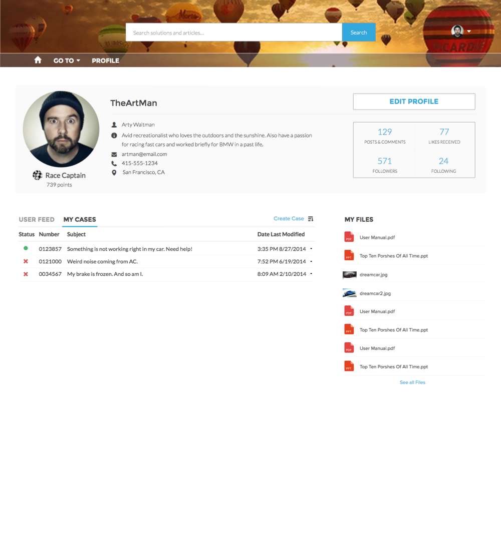 Profile View_ideal_user view.png