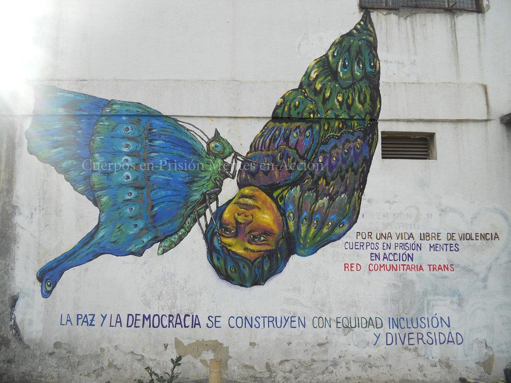 red_comunitaria_trans_carcel_la_picota_mariposa_bastardilla_bogota.jpg
