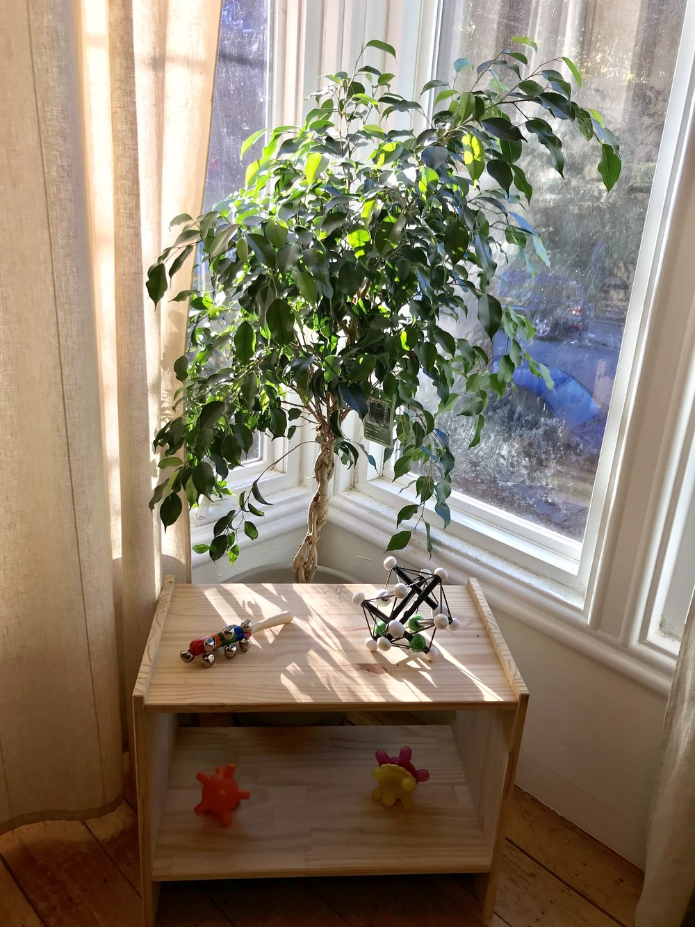 This can even work for protecting house plants!