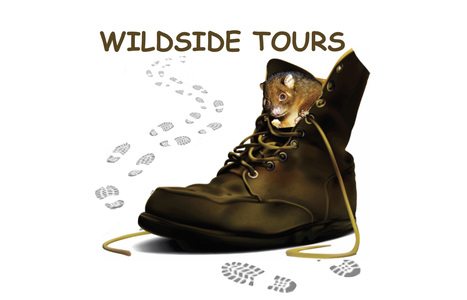 WILDSIDE TOURS