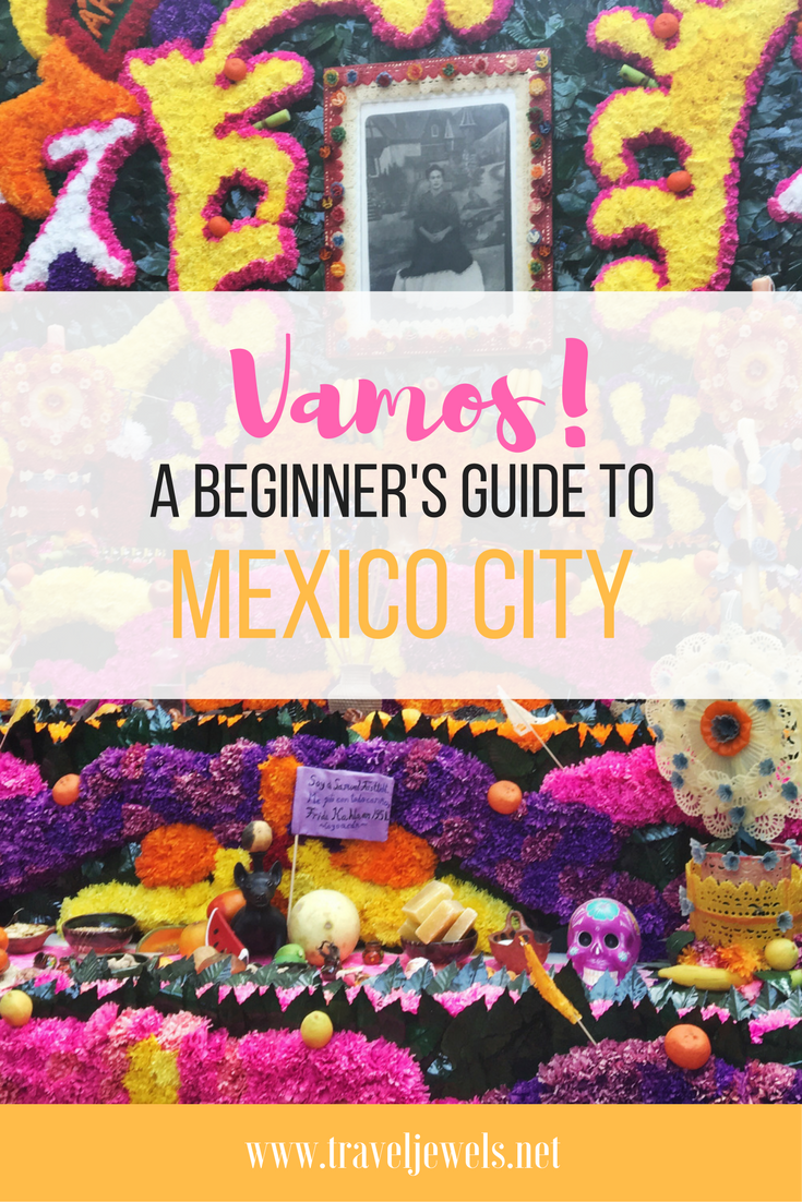 Vamos! A Beginner's Guide to Mexico City