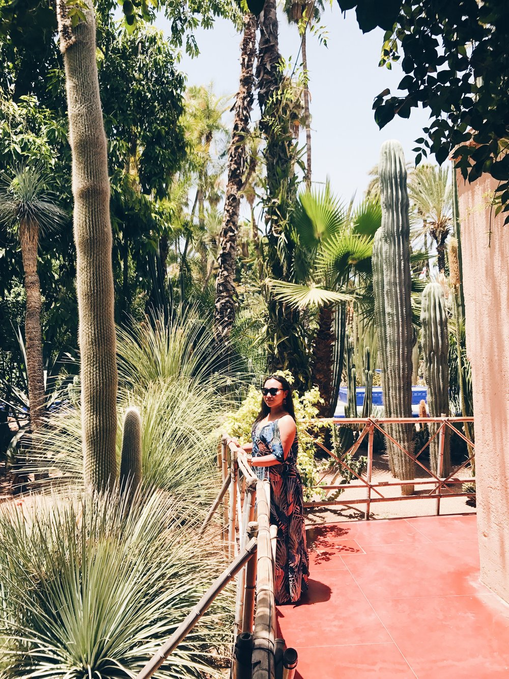 Le Jardin Majorelle in Morocco