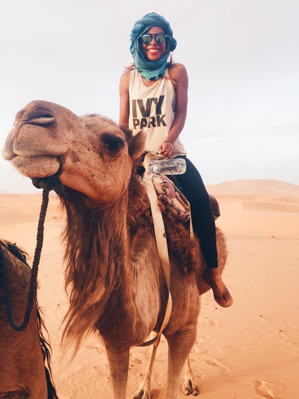 Camel Trek in the Sahara