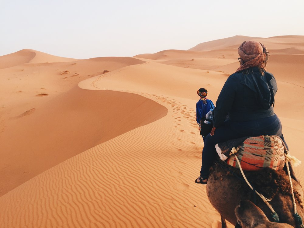 Sunset camel ride in the Sahara Desert