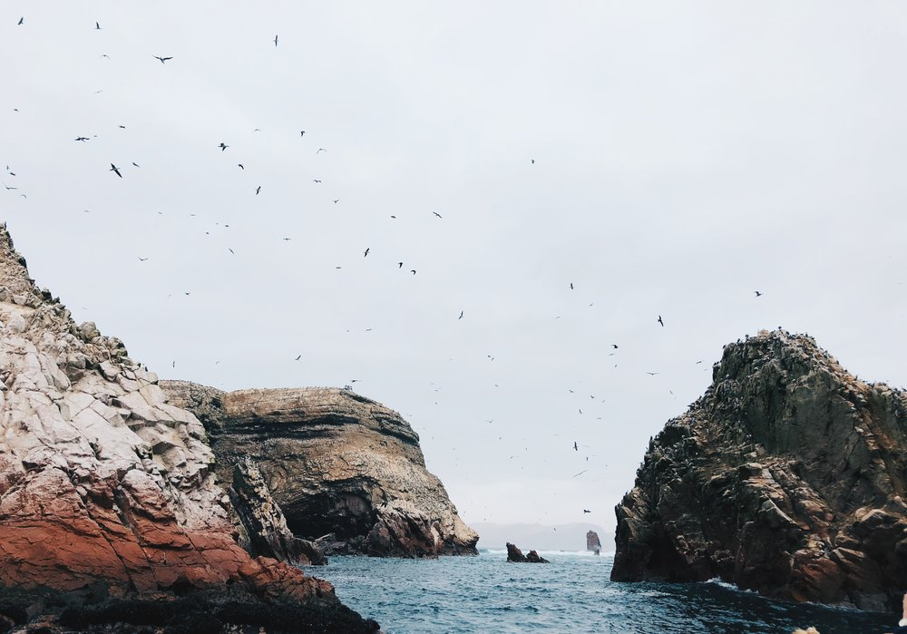The Ultimate Itinerary: 9 Days in Peru- Ballestas Island