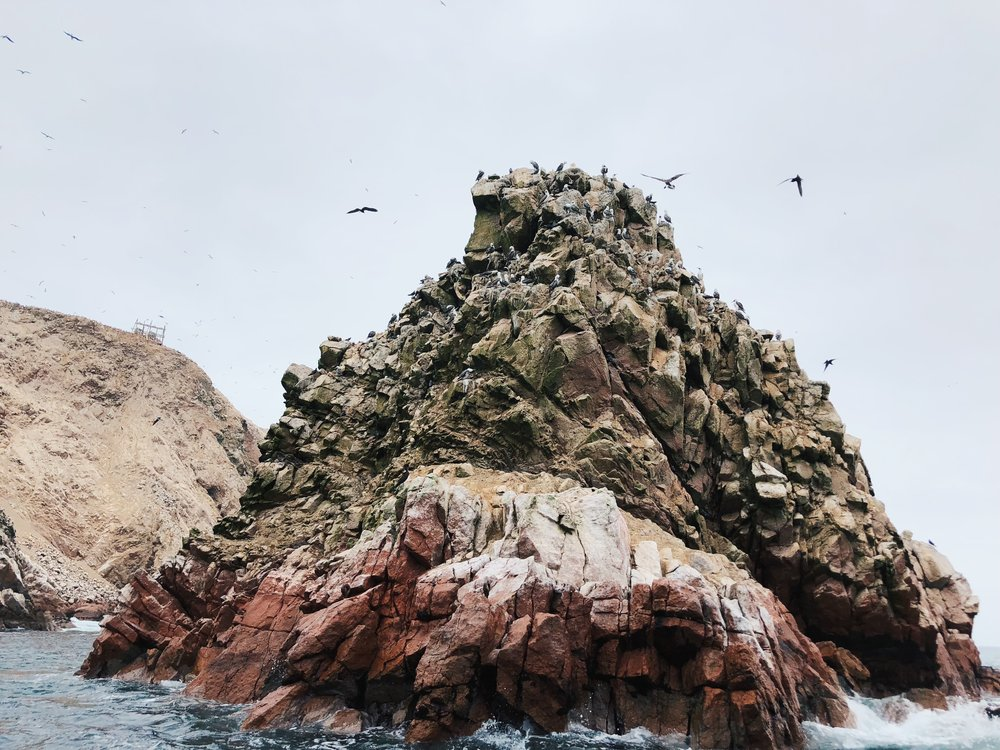 The Ultimate Itinerary: 9 Days in Peru- Ballestas Islands
