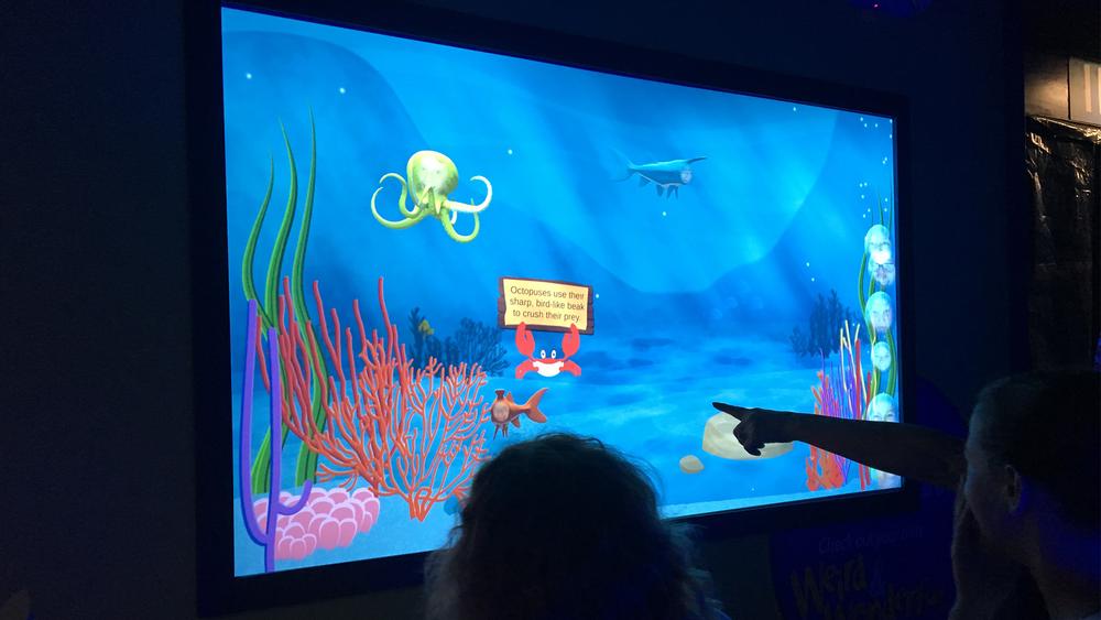 Mystic Aquarium Three.png
