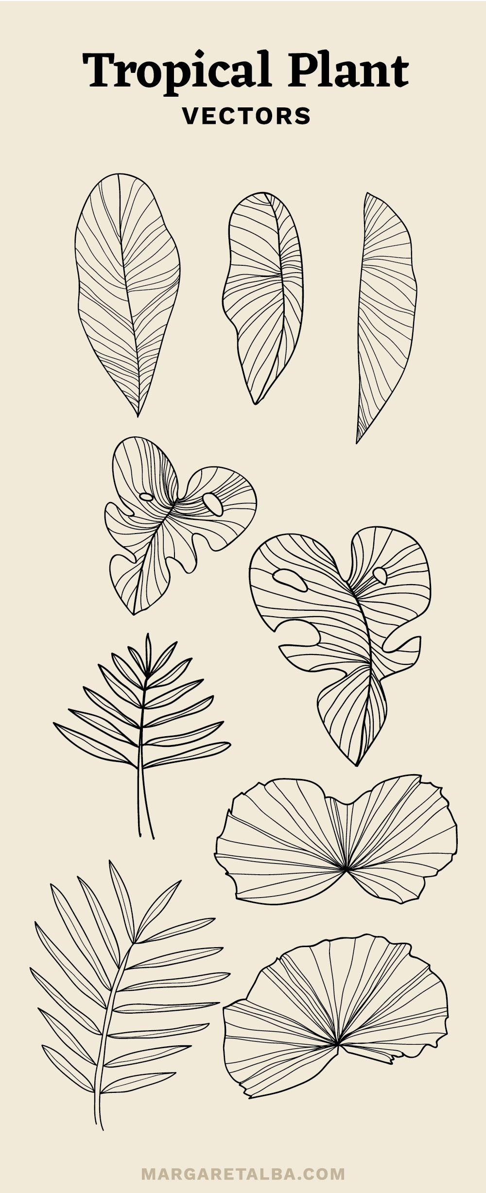 Margaret_Alba_Tropical_Plant_Vector.png