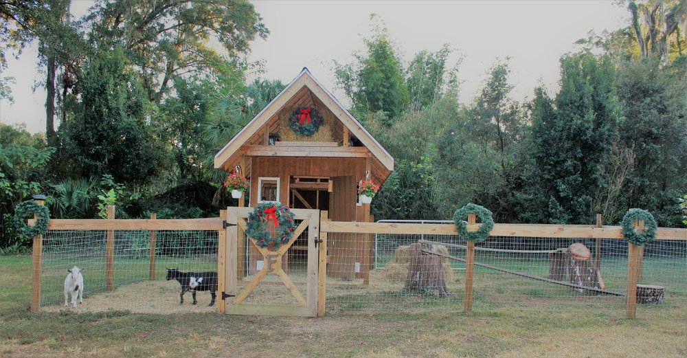 Even the goats get their cottage decorated!