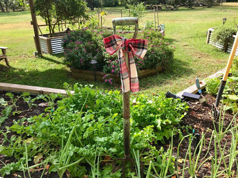 garden fork.JPG