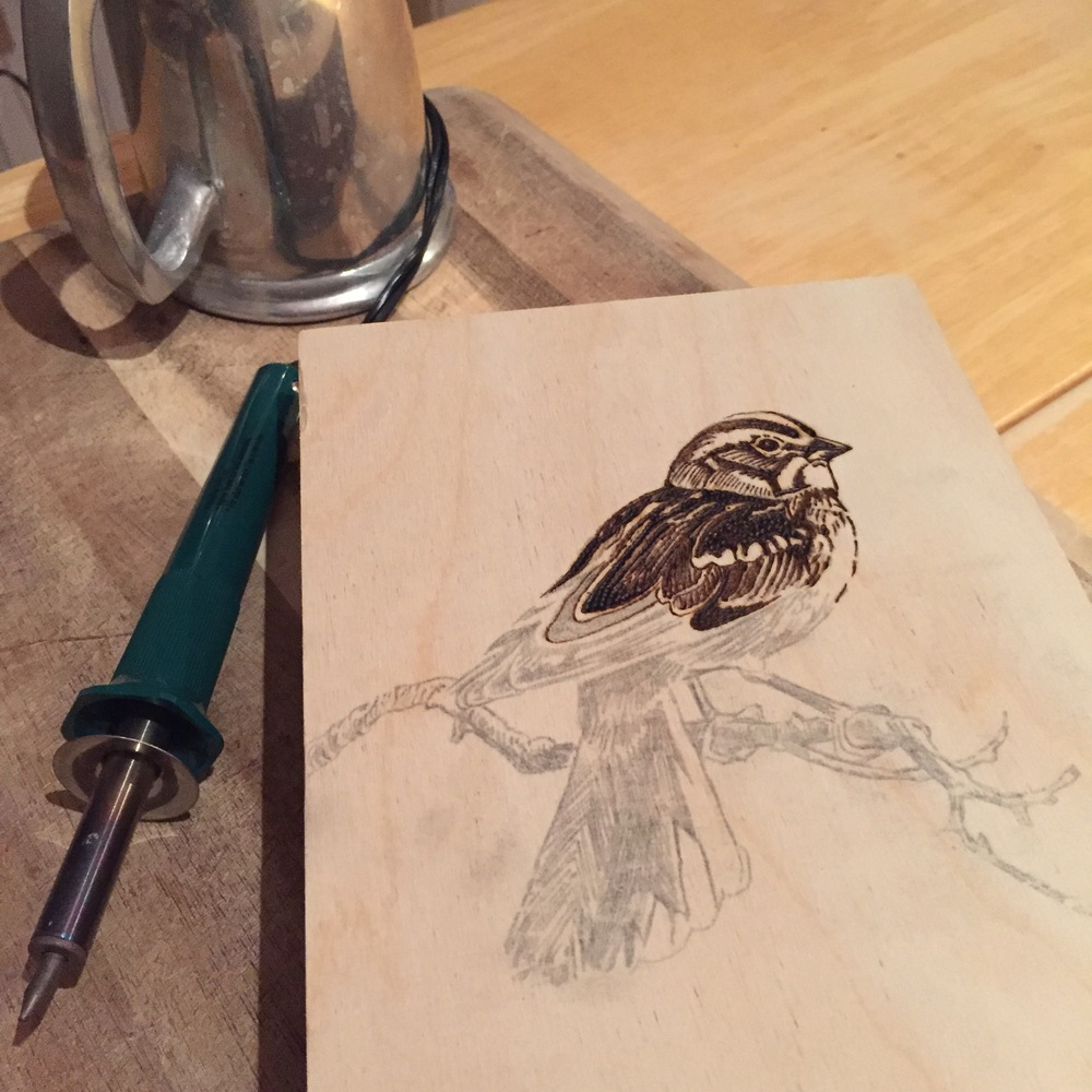 First wood burning: Lark Sparrow