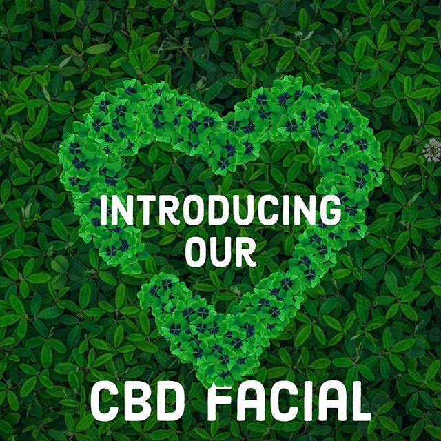 Just in Time for Valentines Day. Book our newest CBD Facial in Orange County California ❤️🌱