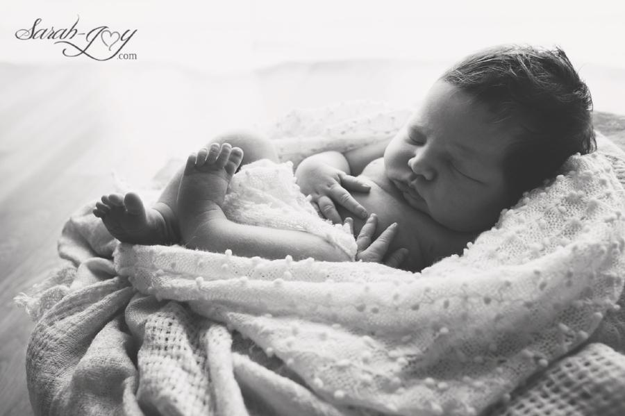 Black and white melbourne newborn photography
