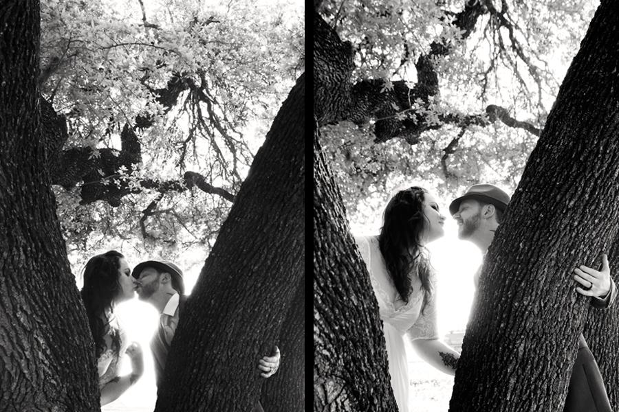 10_kissinginatree.jpg