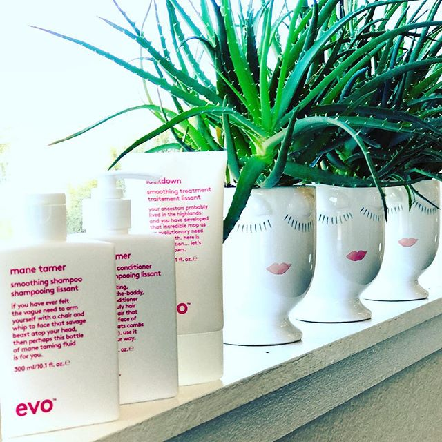 Is your hair unruly in this rain? Lockdown your Mane with @evohair 🙋🏼🙋🏻🙋🏽🙋🏾 #manetamer #lockdown #almostsoldout #smellssogood #workssowell #smoothitout #makeitshine #comeandgetit  #citizenbabe #citizenhair #goodhairforthepeople #fortheloveofhair #evo