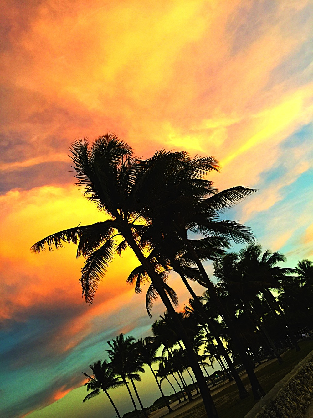 miami sunset.JPG