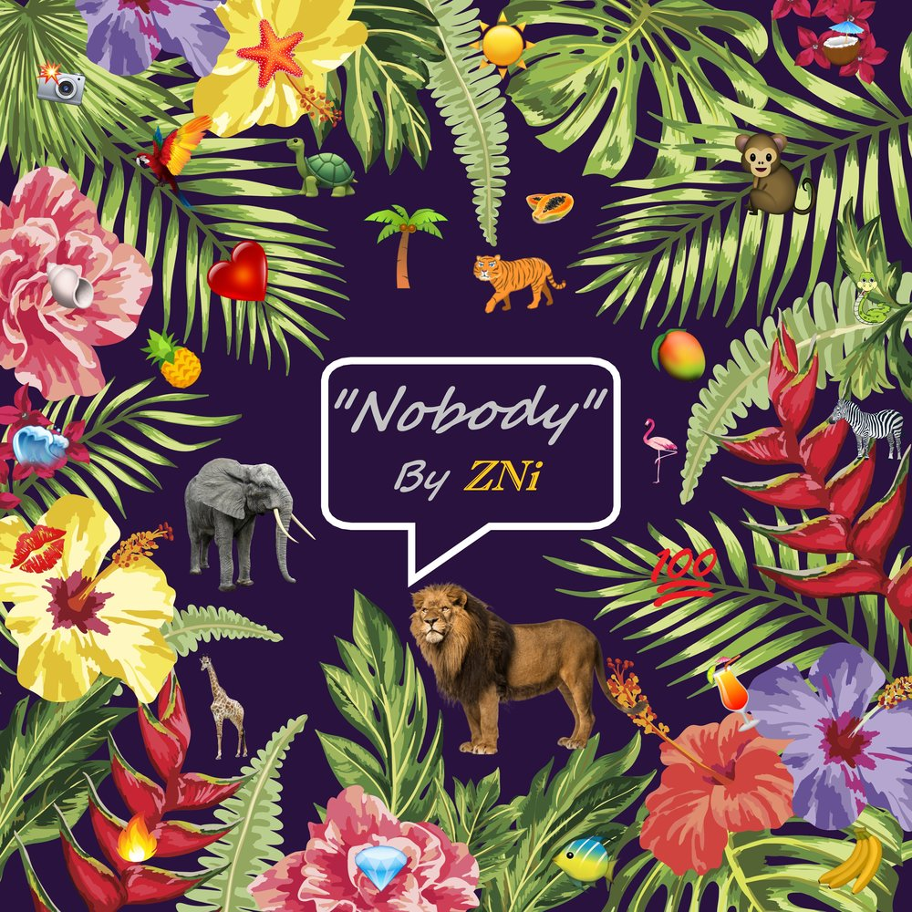nobody cover art example template4.jpg