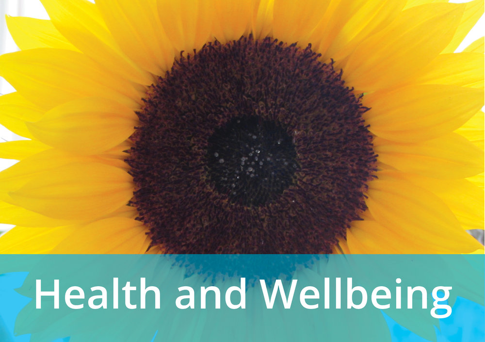 Image gateway to Health and Wellbeing page