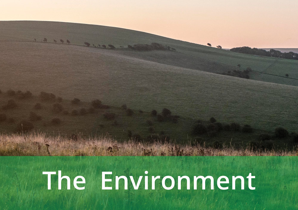 Image gateway of South Downs link to Environment page