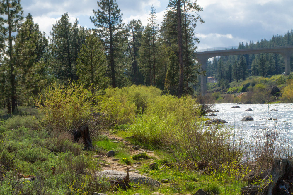 Truckee River running strong - for now - after recent droughts
