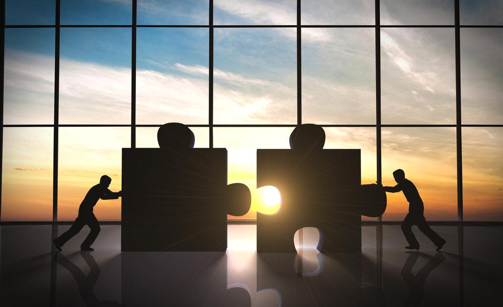 Partnering -