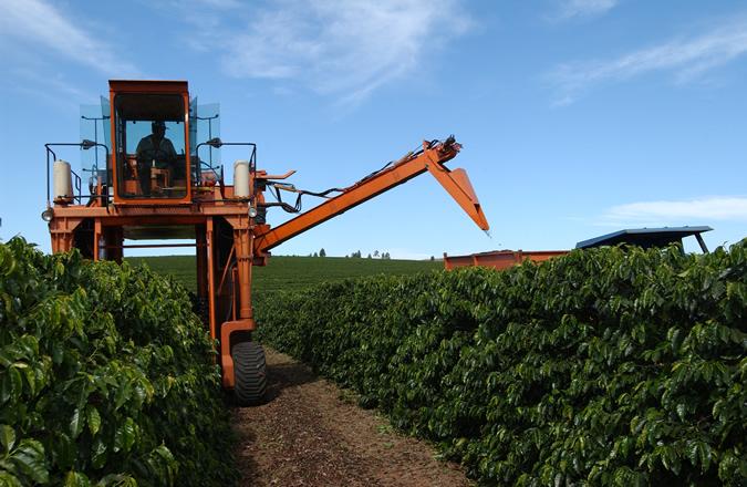 Récolte mécanisée au Brésil.  Crédit photo : Laboratoire BioDontyl.