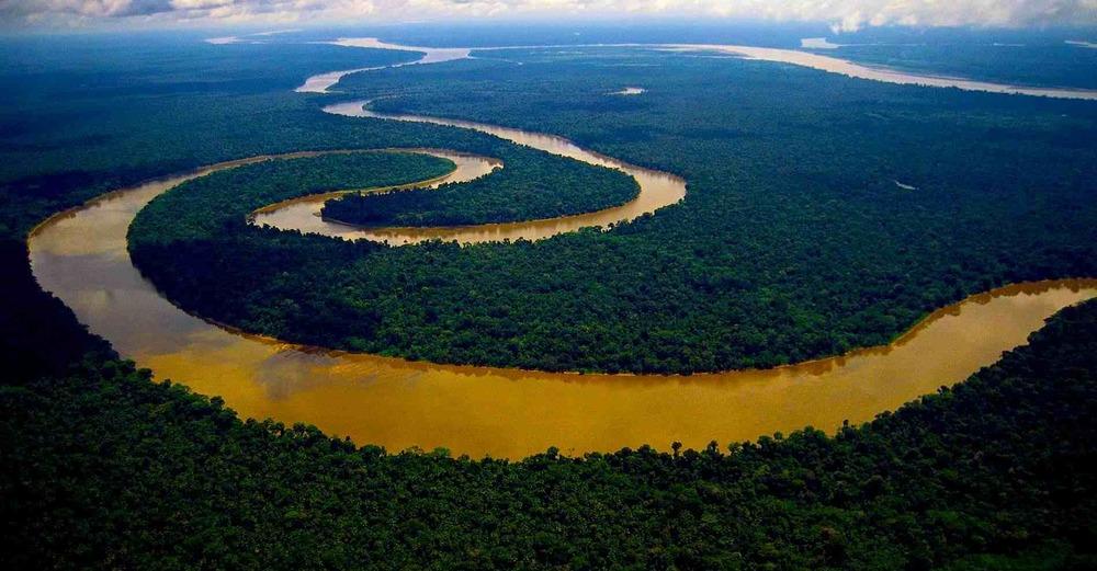 L'Amazonie -Crédit: Gayatrek