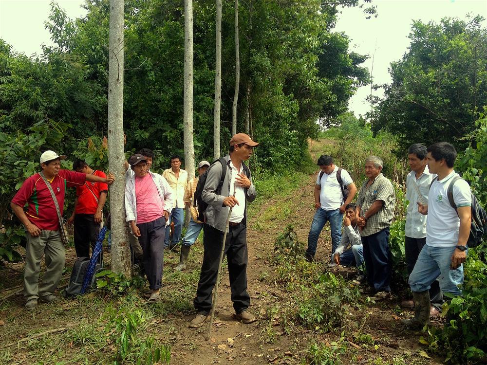 Desiderio, explicando las buenas prácticas de cultivo a otros socios