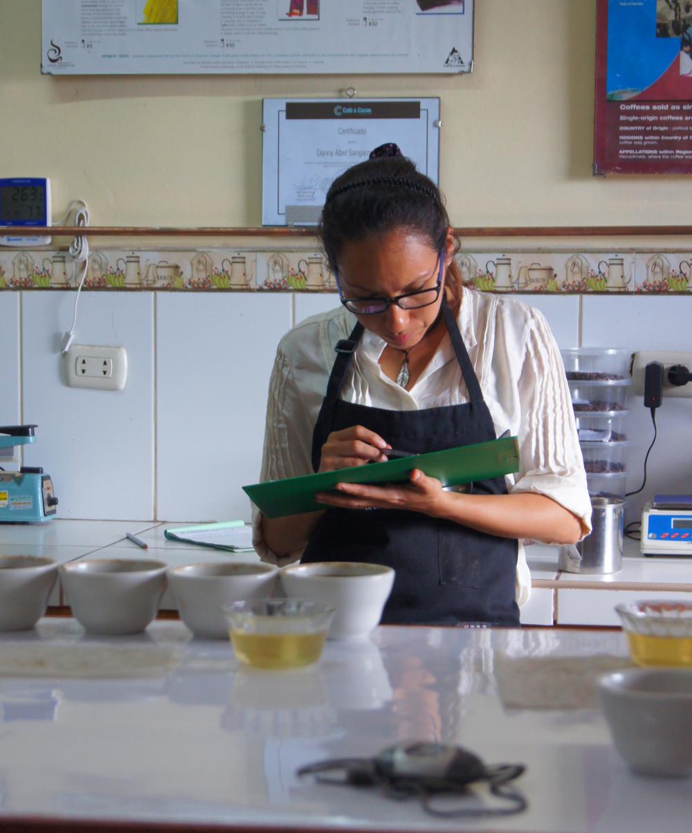 Séance de cupping au laboratoire de contrôle qualité d'Oro Verde.