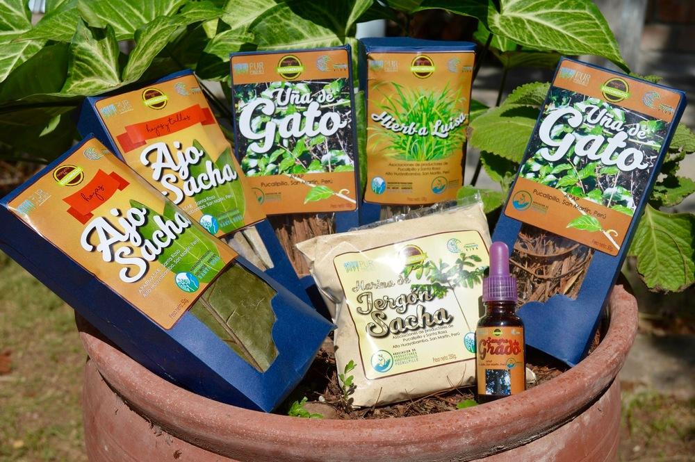 Produits à base de plantes médicinales mis au point pour l'Expo Amaz  ónica - Crédit photo: Léa Viret