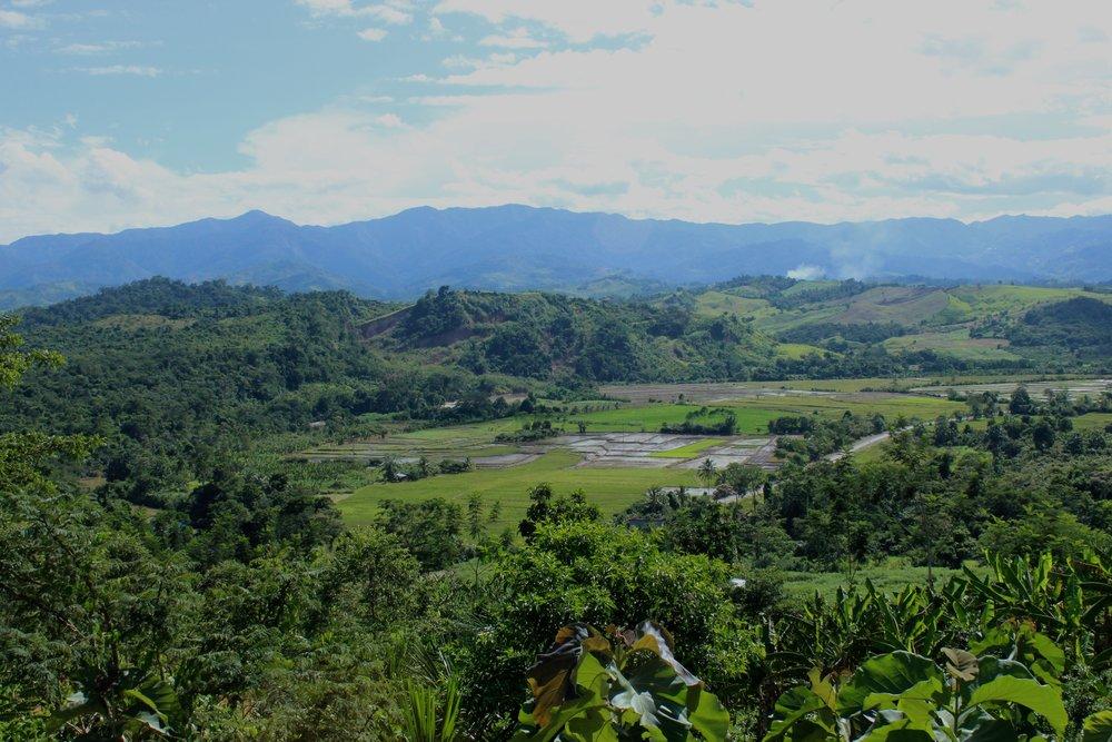Région de San Martin, au Pérou, où intervient ForestFinance -Crédit:ForestFinance