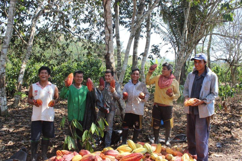 L'équipe de ForestFinance au Pérou -Crédit: ForestFinance