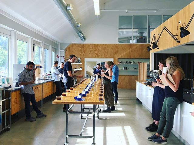 Ending the summer with a beautiful series of cuppings ☕️ at @collaborativecs 🐋 🇳🇴 —— #ccssummercrops #ccssummersendcelebration #ccscupping #ccsoslohq #ccscolombia #ccsburundi #ccsbrazil @kaffa_oslo @frederick_bejo @thefleck.coffeeroasters @fuglenoslo @origo_coffee @populus_coffee @oskarpikola @tetsukasuya @mamecoffeeshop @nordoslo @ditteioslo @carmocoffees @lapalmayeltucan @longmilescoffee