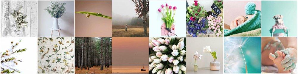 itsmyweek_collage_mood