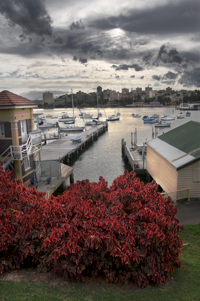Boats at Manly Cove noframe.jpg
