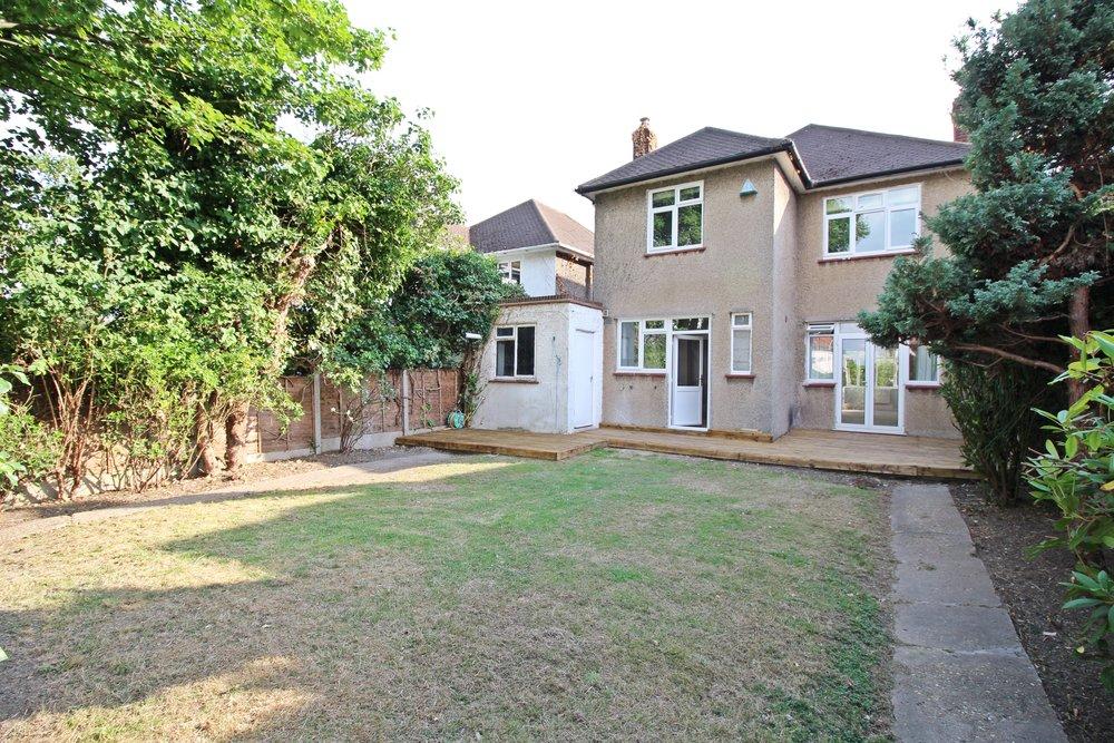 back garden 10.jpg