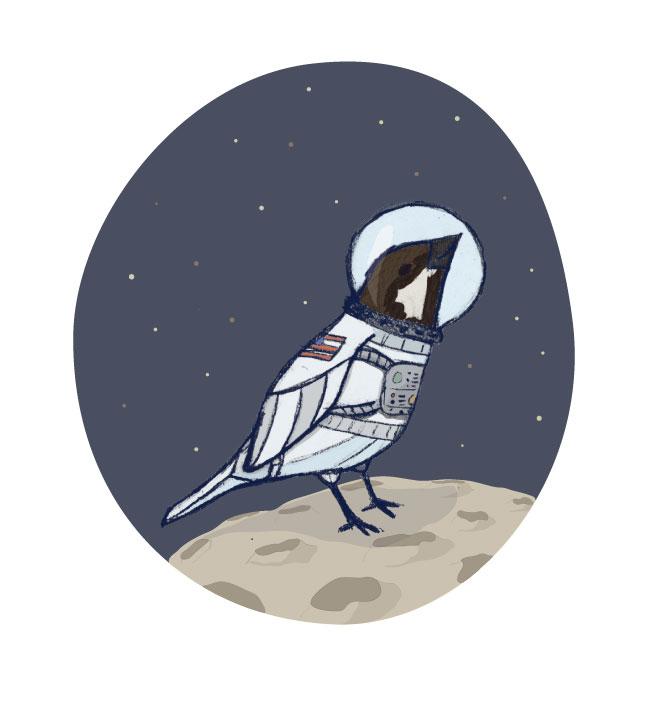 Space-Sparrow-Final.jpg