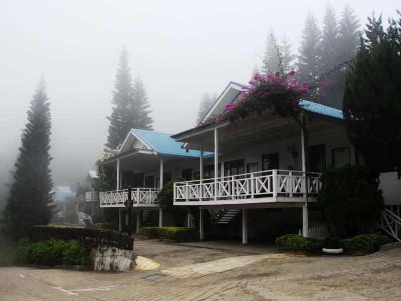 Afternoon mist