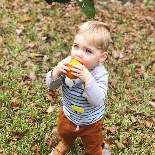 Ben figured out how to pick oranges from our tree yesterday and shared with Ellie. Luckily there were two (and only two) within reach.