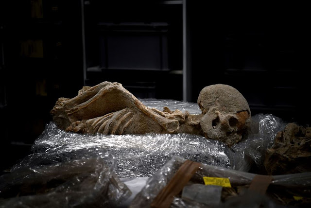 A photo taken on July 7, 2017 shows a human skeleton with the hands tied in the back stored in a lab    at the American School of Archaeology in Athens [Credit: Aris Messinis/AFP]