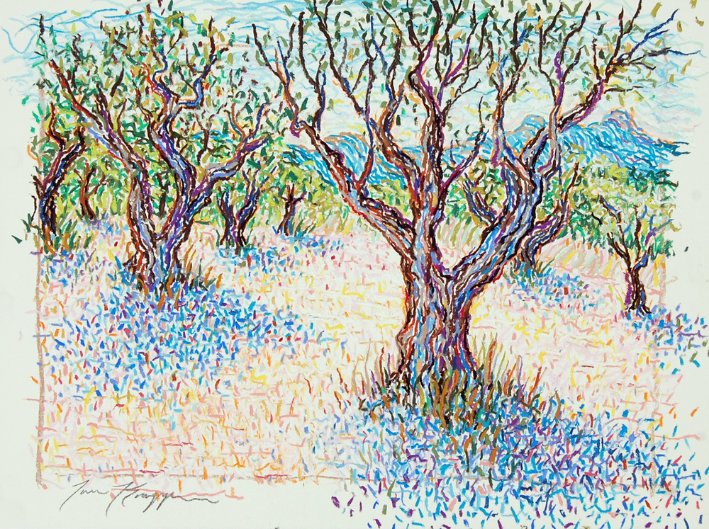Olive Trees of St. Remy