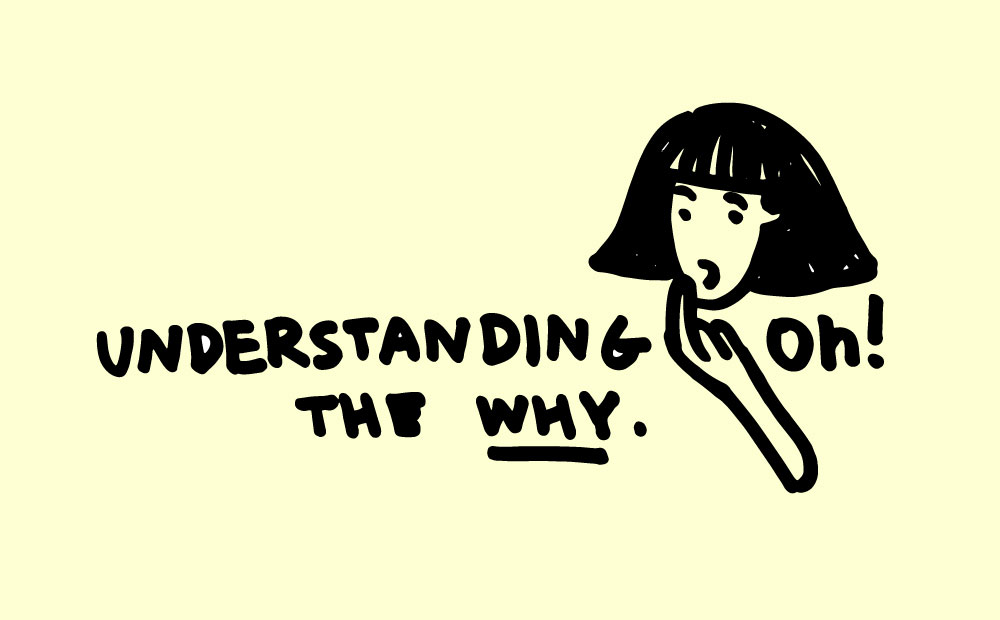 understanding the why