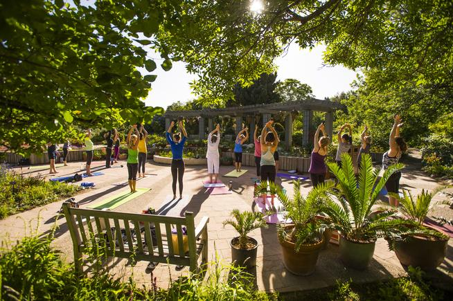 Yoga at the Denver Botanic Gardens