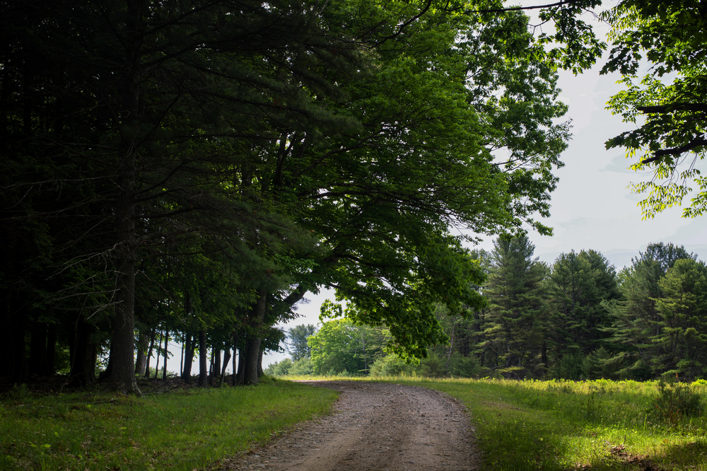 A gravel road winds its way through fields and forests, following the route of the original 'Perkins Highway'.