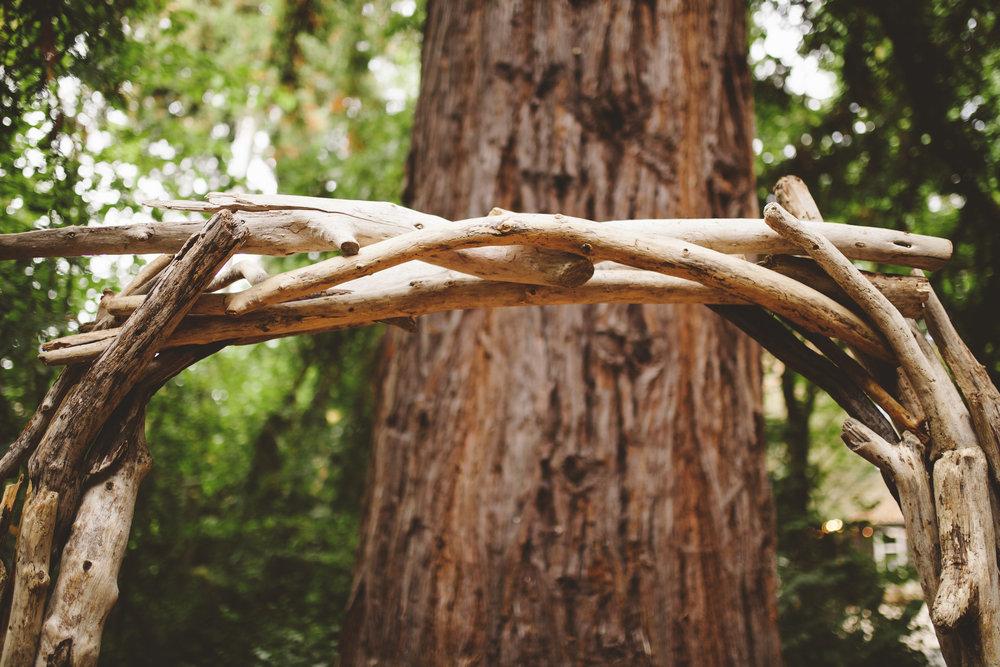 An arbor made of driftwood from Manresa Beach.