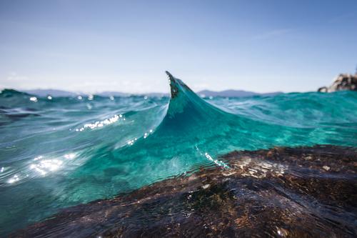 Waves-3.jpg?format=500w
